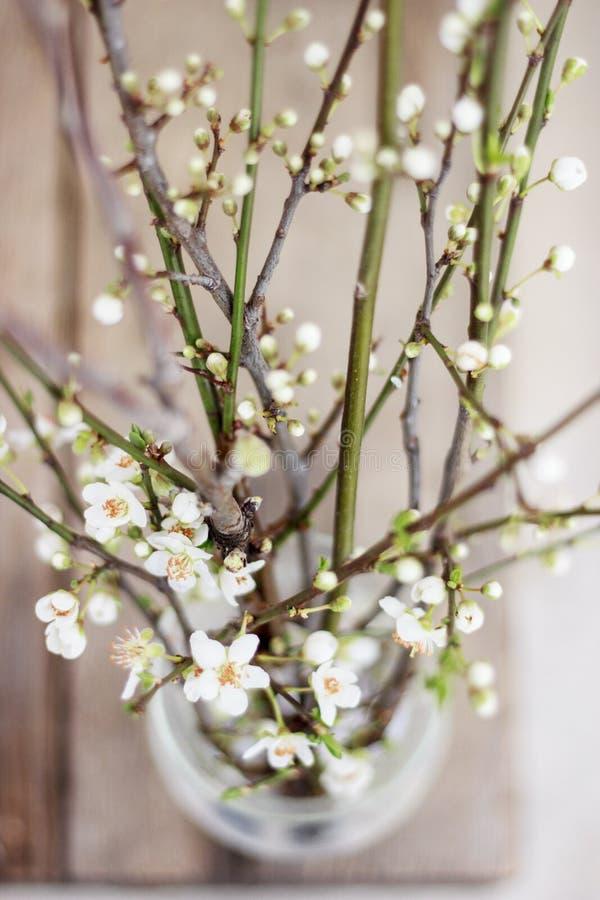 Flores da mola em uma vista superior de vidro imagens de stock