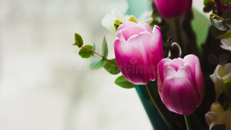 Flores da mola - um ramalhete das tulipas cor-de-rosa iluminadas com luz suave fotos de stock