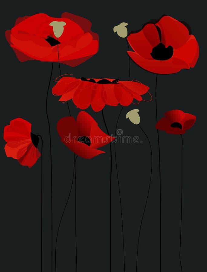 Flores da papoila da flor ilustração royalty free