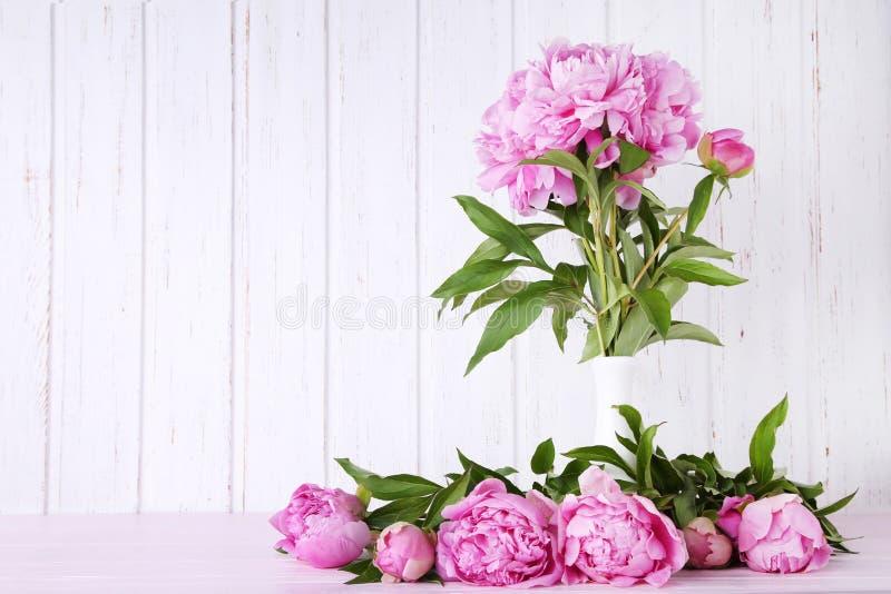 Flores da peônia imagens de stock