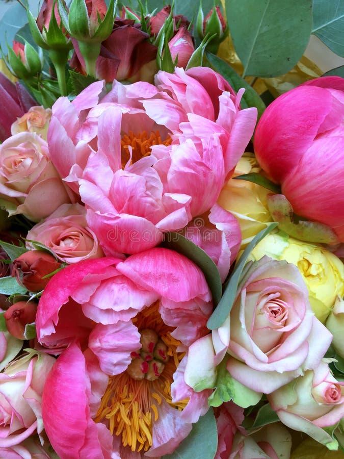 Flores da pe?nia com rosa e as p?talas vermelhas em um ramalhete em um dia de ver?o Ramalhete cor-de-rosa com peônias e rosas foto de stock royalty free