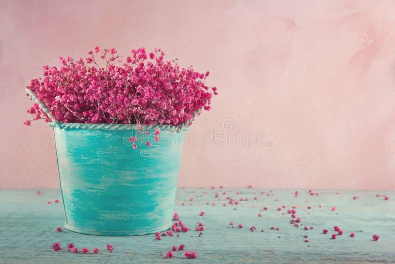 Flores da respiração do bebê cor-de-rosa no fundo de madeira imagens de stock