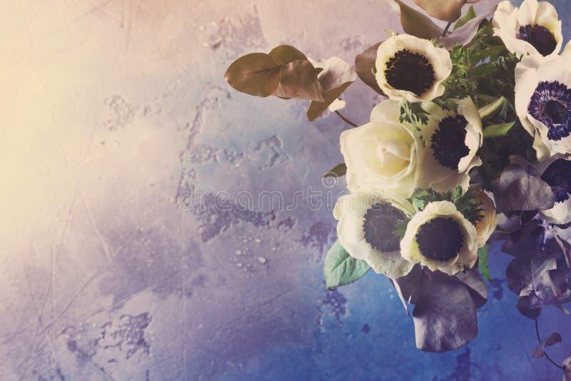 Flores das anêmonas no fundo de pedra imagens de stock royalty free