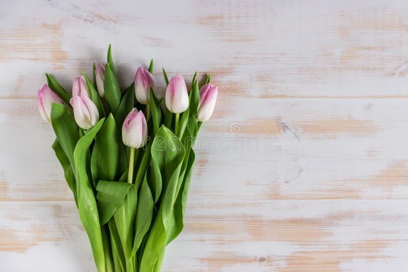 Flores das tulipas da mola no fundo de madeira foto de stock royalty free