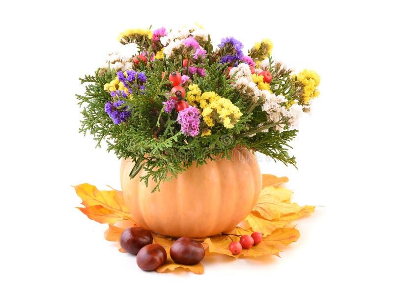 Flores de Autmn en calabaza imagen de archivo libre de regalías