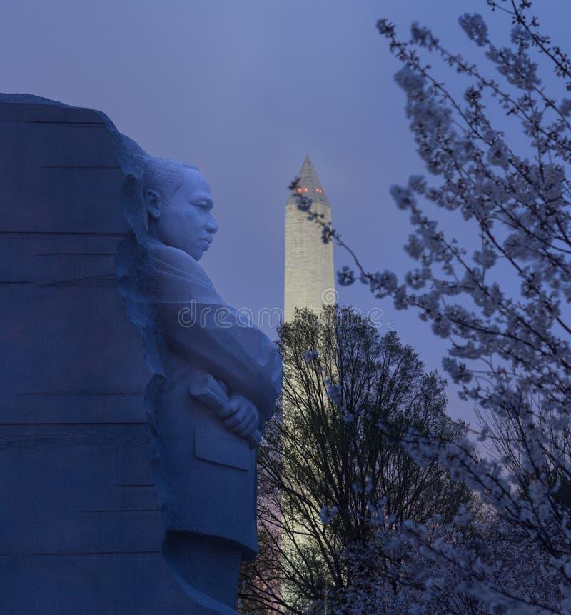 Flores de cereja e monumento de MLK imagens de stock