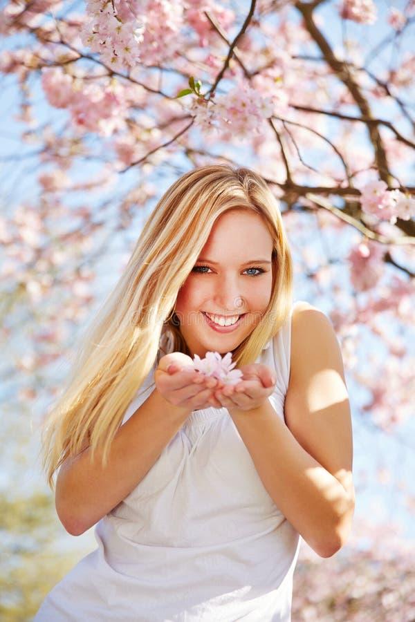 Flores de cerejeira de cheiro da jovem mulher imagem de stock royalty free