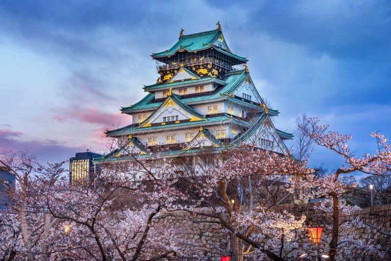 Flores de cerejeira e castelo em Osaka, Japão imagens de stock royalty free