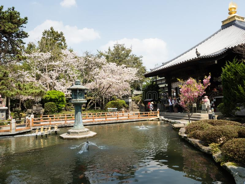 Flores de cerezo en Ryozenji, templo número 1 del peregrinaje de Shikoku-henro fotografía de archivo libre de regalías