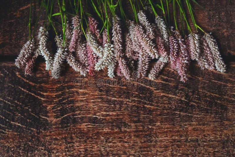 Flores de Fiolet en fondo de madera del eco oscuro foto de archivo