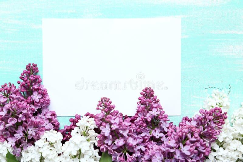 Flores de florescência do lilac imagens de stock