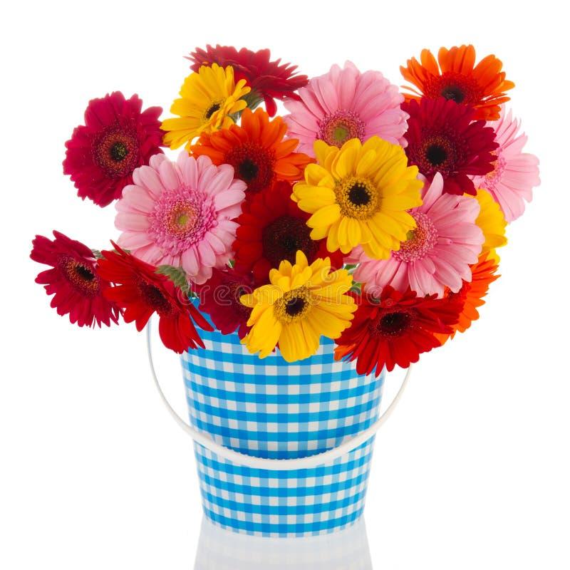 Flores de Gerber do ramalhete fotografia de stock royalty free