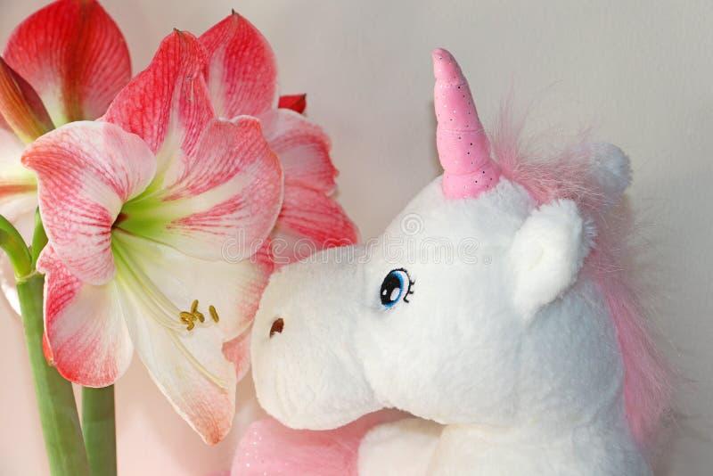 Flores de Hippeastrum y una muñeca del unicornio fotografía de archivo