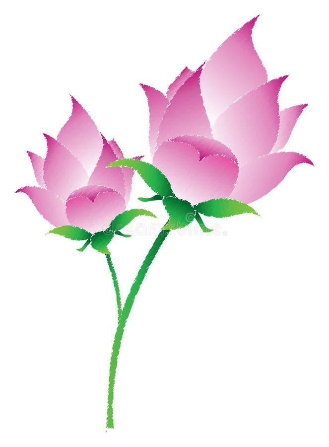 Flores de lótus cor-de-rosa ilustração stock