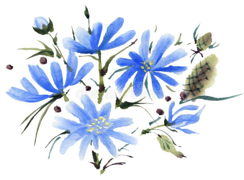Flores de la acuarela aisladas en un fondo blanco libre illustration