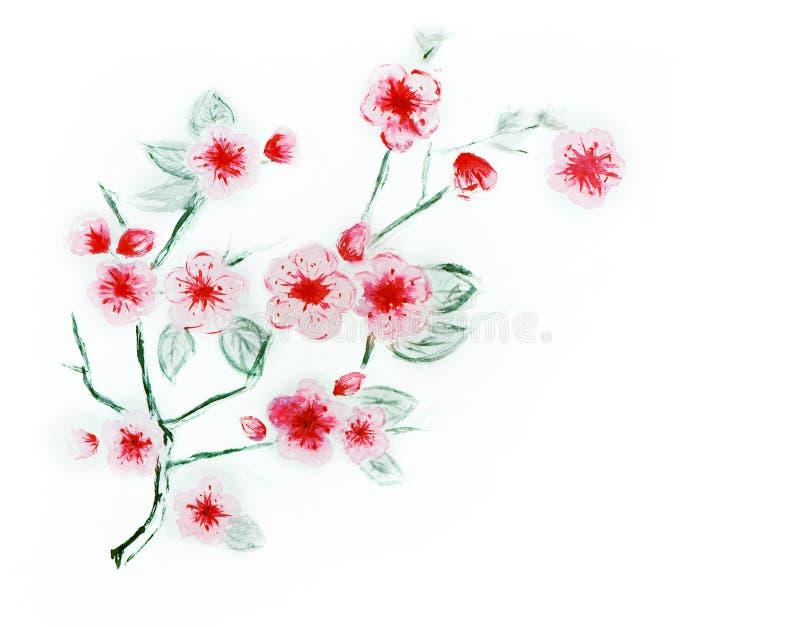 Flores de la acuarela en un fondo blanco libre illustration