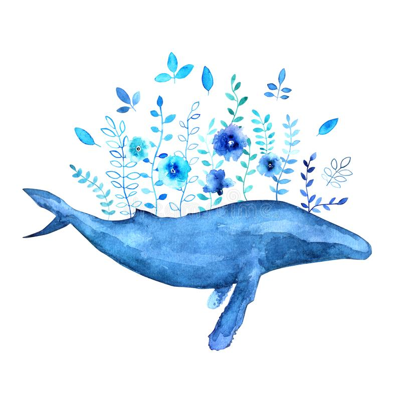 Flores de la ballena jorobada foto de archivo