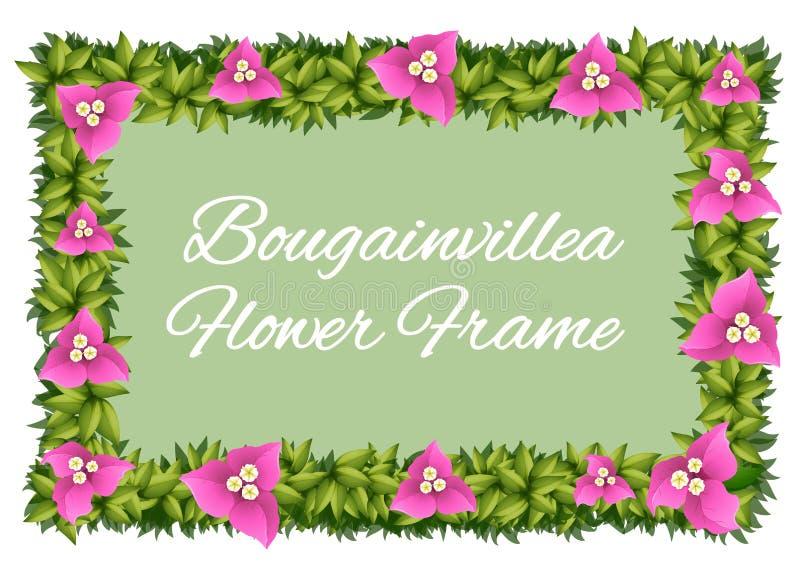 Flores de la buganvilla como diseño del marco stock de ilustración