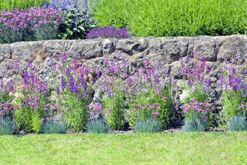 Flores de la cabaña del verano en un jardín inglés imagenes de archivo