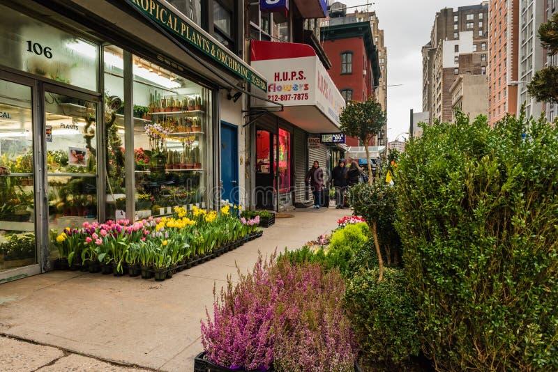 Flores de la calle en Chelsea Flower Market - New York City foto de archivo libre de regalías