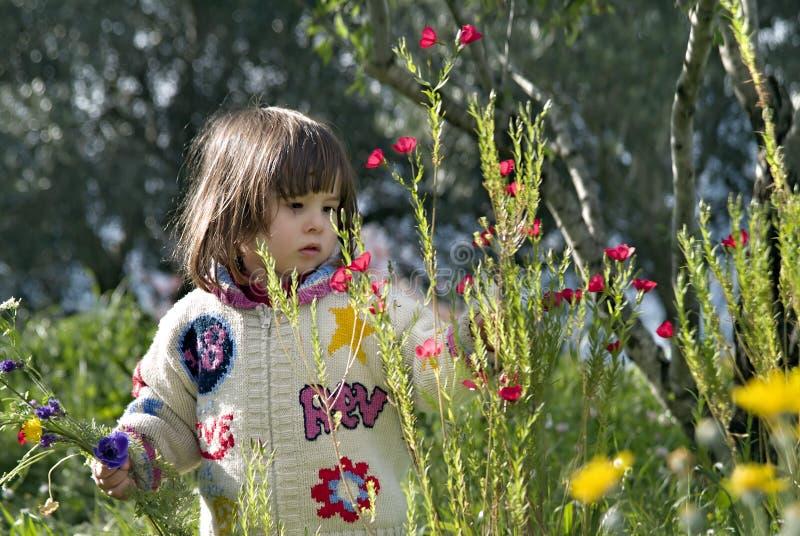 Flores de la cosecha de la muchacha imagen de archivo libre de regalías