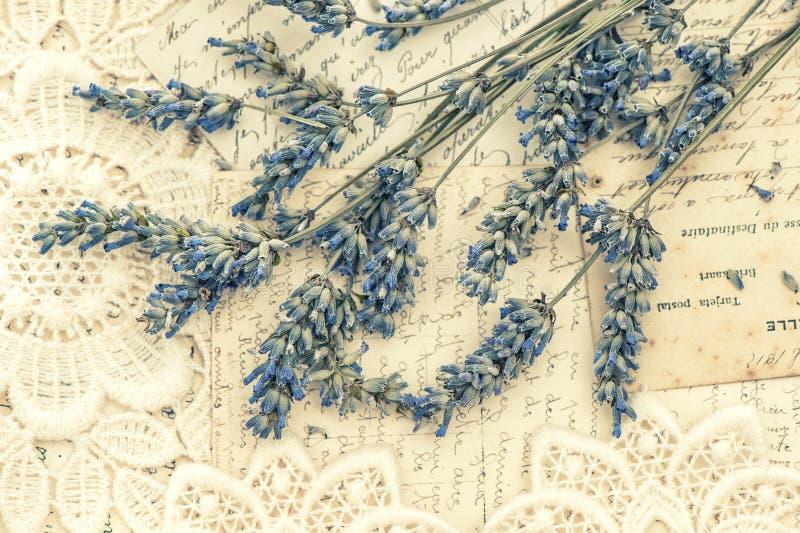 Flores de la lavanda y postales secadas del amor del vintage imágenes de archivo libres de regalías