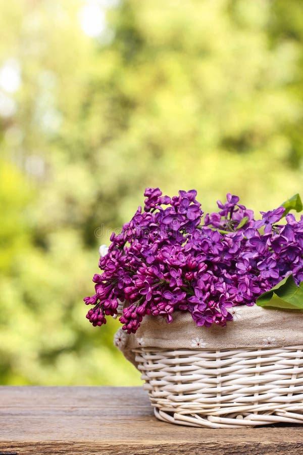 Flores de la lila en la cesta de mimbre blanca fotos de archivo