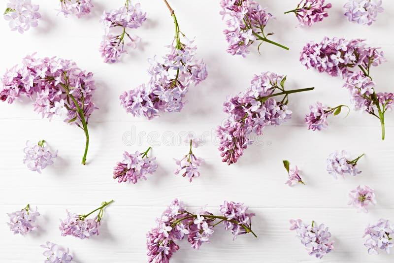 Flores de la lila de la primavera en el fondo de madera blanco fotografía de archivo