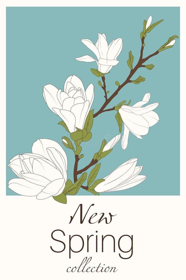 Flores de la magnolia en fondo azul stock de ilustración