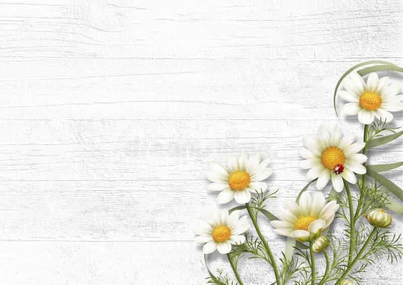 Fondo De Madera Vintage Con Flores Blancas Manzana Y: Flores De La Manzanilla De La Margarita En Fondo De Madera
