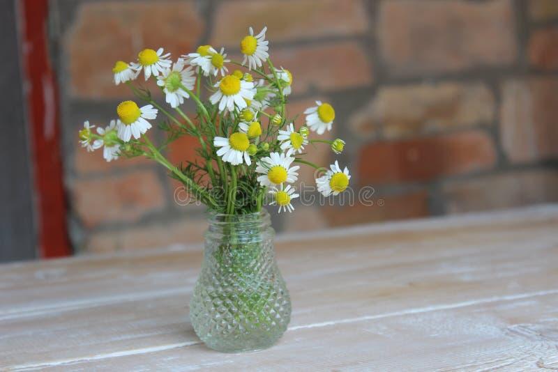 Flores de la manzanilla en un florero de cristal fotos de archivo