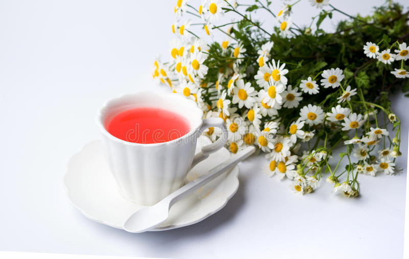 Flores de la manzanilla y una taza de té fotografía de archivo