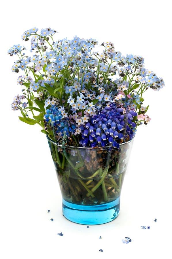 Flores de la nomeolvides en un vidrio transparente azul fotos de archivo libres de regalías