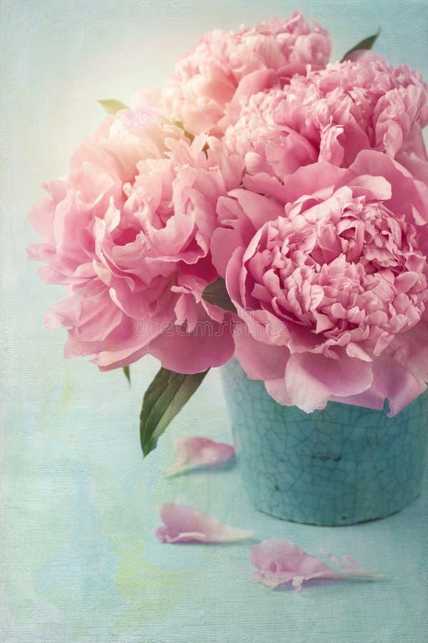 Flores de la peonía fotos de archivo