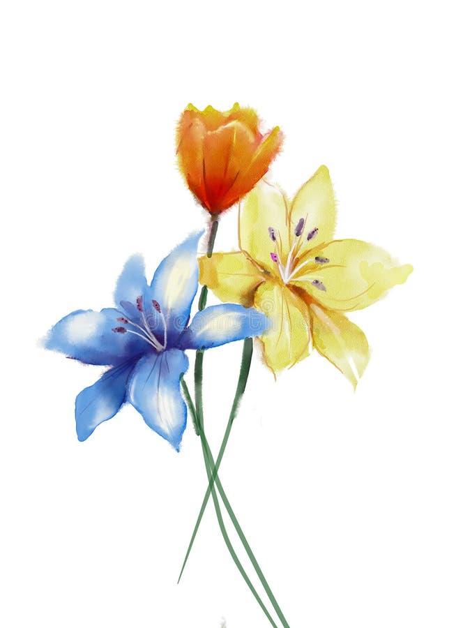 Flores de la pintura de la acuarela aisladas en el fondo blanco libre illustration