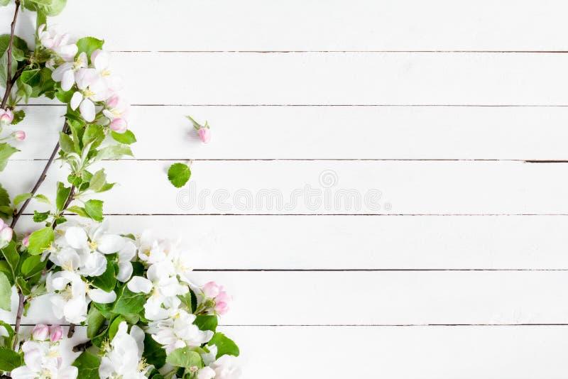 Fondo De Madera Vintage Con Flores Blancas Manzana Y: Flores De La Primavera En El Fondo De Madera Blanco Imagen