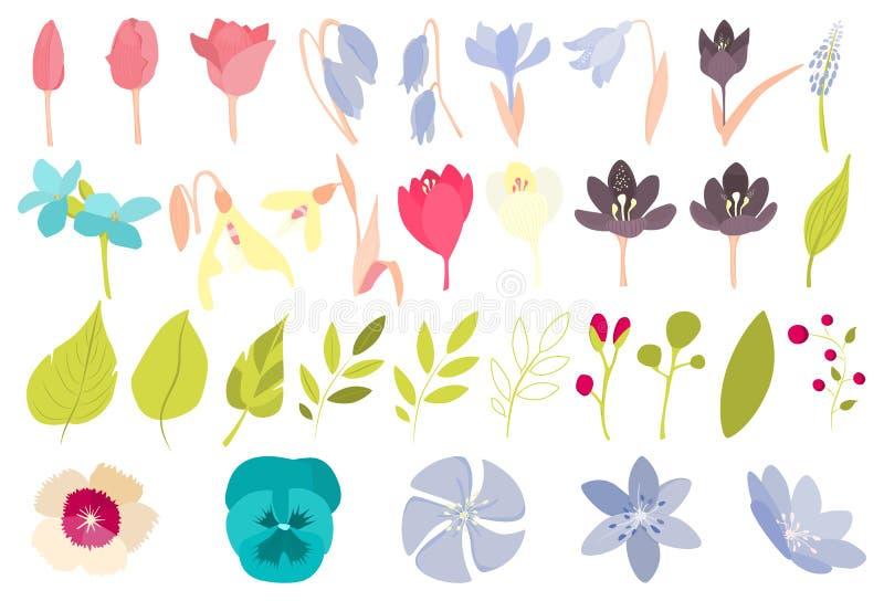 Flores de la primavera fijadas ilustración del vector