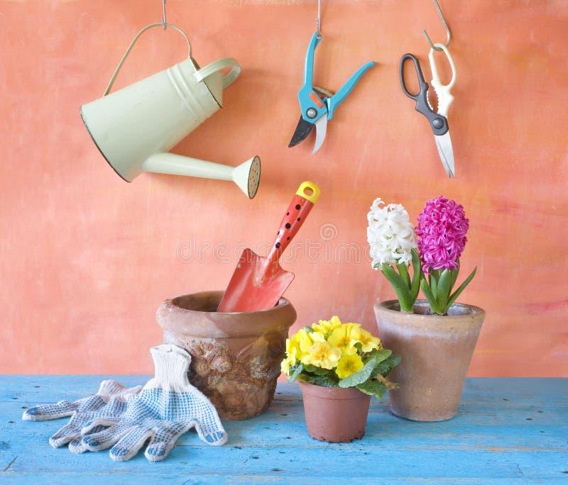 Flores de la primavera y herramientas que cultivan un huerto fotos de archivo