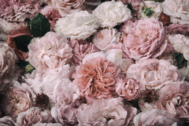 Flores de la vendimia imágenes de archivo libres de regalías
