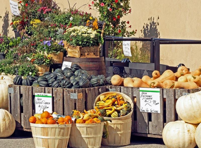 Flores de las calabazas, de las calabazas y de la caída para la venta en el mercado de un granjero al aire libre imagen de archivo