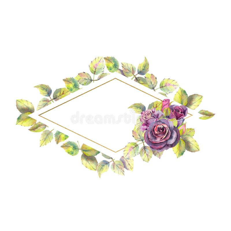 Flores de las rosas oscuras, hojas verdes, la composición en un marco geométrico del oro Marco de forma diamantada watercolor libre illustration