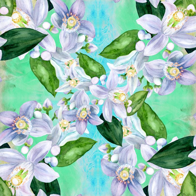 Flores de los árboles de fruta cítrica - limón, naranja, bergamota, cal Gráfico inconsútil del fondo watercolor stock de ilustración