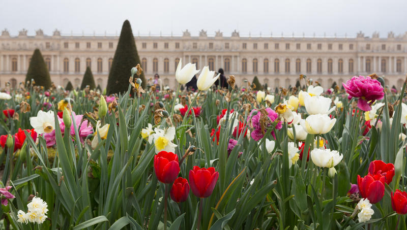 Flores de los jardines de Versalles foto de archivo libre de regalías