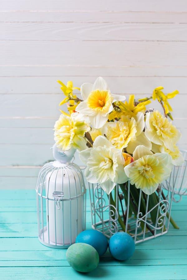 Flores de los narcisos de la primavera y huevos de Pascua amarillos fotografía de archivo libre de regalías