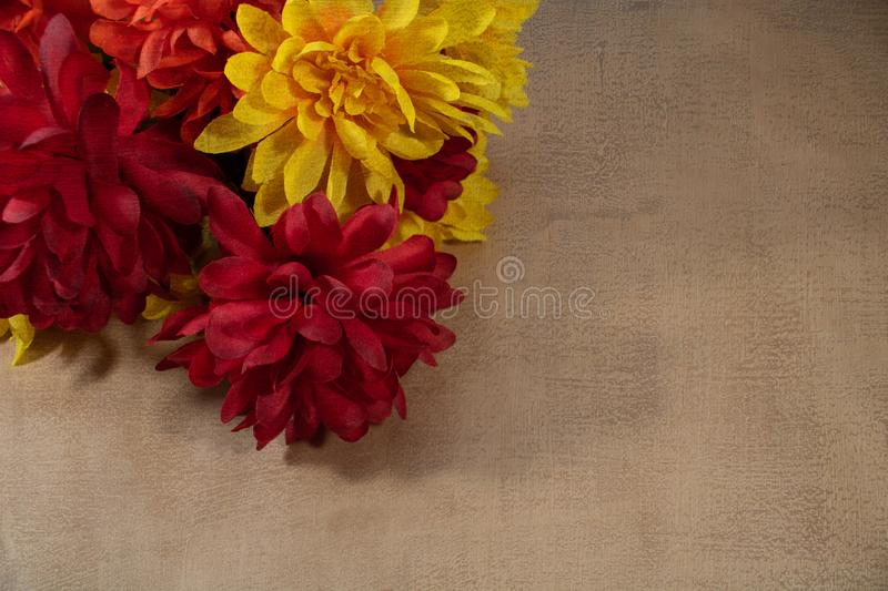 Flores de otoño rojas y amarillas en segundo plano imagenes de archivo