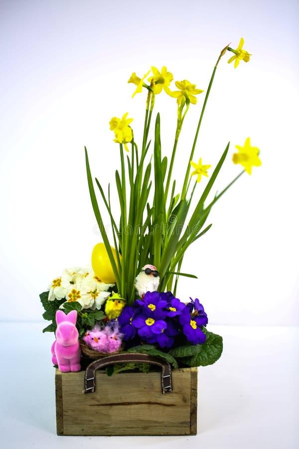 Flores de primavera, arranjos com flores de primavera, miúda, miúda engraçada, coelho de Páscoa, fundo branco imagens de stock