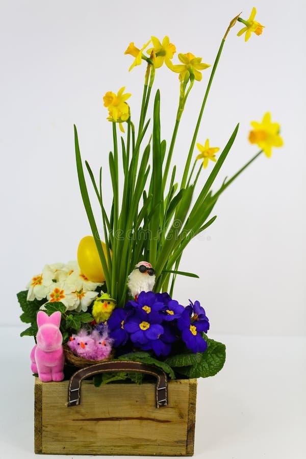 Flores de primavera, arranjos com flores de primavera, miúda, miúda engraçada, coelho de Páscoa, fundo branco imagens de stock royalty free