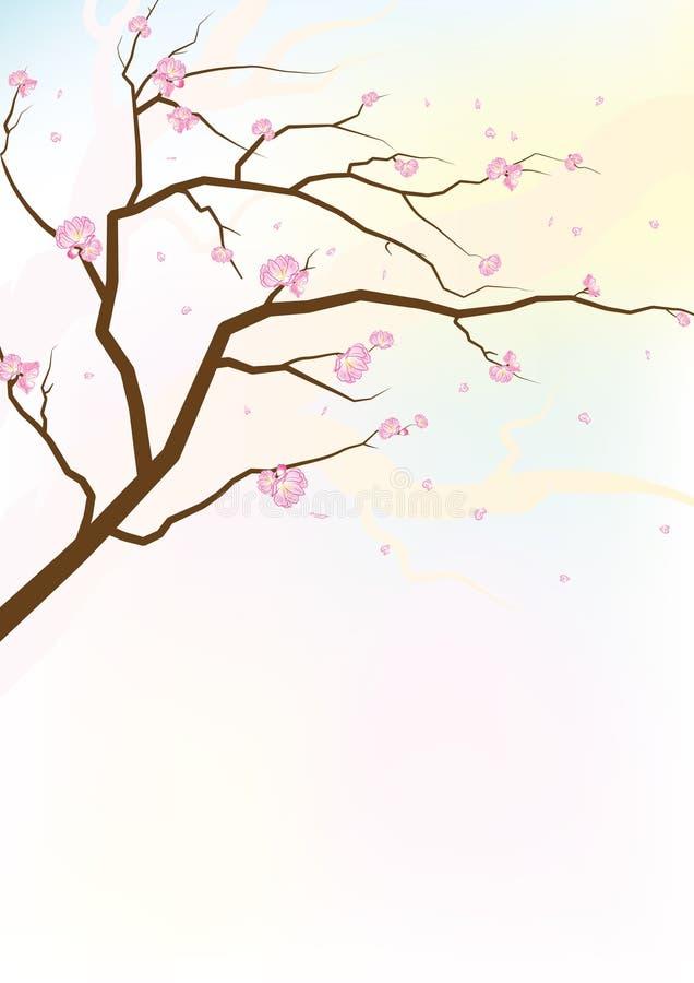 Flores de Sakura libre illustration