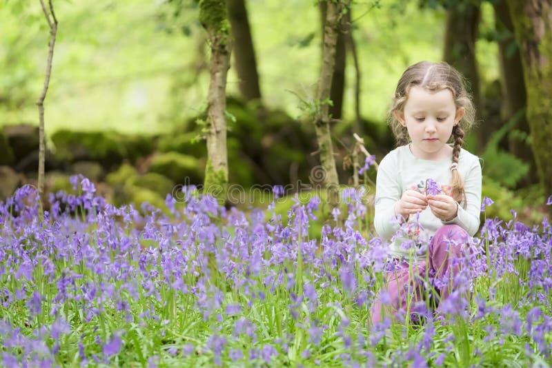 Flores de selección sonrientes felices de la campanilla de la chica joven exteriores en arbolado del bosque del verano de la prim foto de archivo libre de regalías