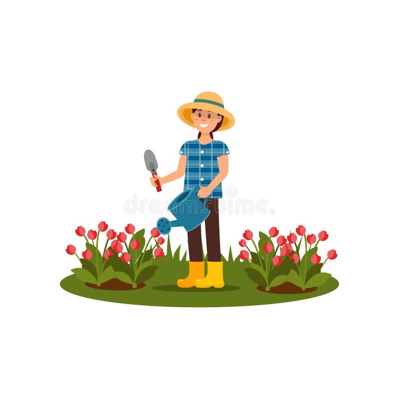 Flores de sorriso da mola molhando da mulher Moça que trabalha no jardim Camas de flor com tulipas Ilustração lisa do vetor ilustração royalty free